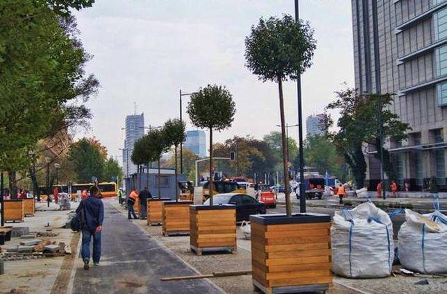 Zieloni nie odpuszczają. Na Świętokrzyskiej chcą drzew zamiast donic