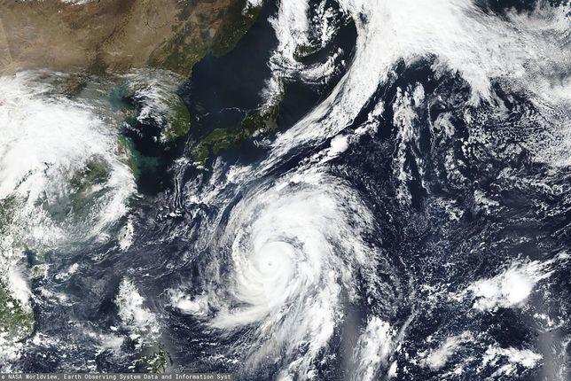Tajfun Hagibis: Potężna burza odpowiednikiem huraganu 5 kategorii. Zmierza w kierunku Japonii. Czy  polscy siatkarze są bezpieczni?