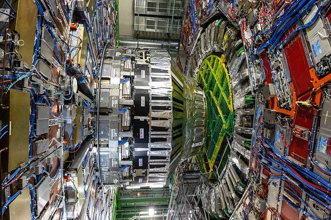 Wielki Zderzacz Hadronów znowu w akcji. Pomógł w ważnych obserwacjach