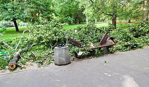 """W Parku Praskim zawaliło się drzewo na matkę z dzieckiem. """"Nawet nie pożegnałam się z córką"""""""