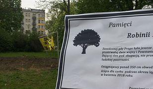 Mieszkańcy Pragi żegnają ścięte drzewo. Przygotowali nekrolog