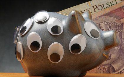Jak oszczędzają Polacy? Programy oszczędnościowe BPH TFI