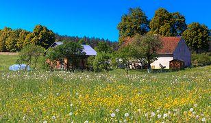 Pod względem warunków mieszkaniowych w Polsce wciąż mamy przepaść między miastem a wsią.