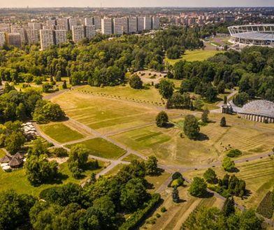 Chorzów. Ciężki sprzęt budowlany w parku, lepiej zaplanować trasę spaceru