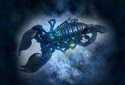 Horoskop dzienny na wtorek 24.08.2021. Gwiazdy czuwają nad znakami zodiaku