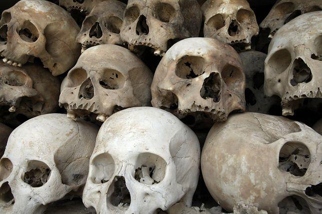 Niemcy zwróciły  szczątki 27 osób - ofiar wielkiego ludobójstwa w Namibii