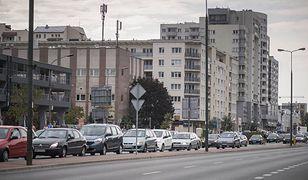 Krzysztof Strzałkowski uważa, że drzewa przy ulicy są niebezpieczne