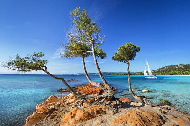 Najlepsze europejskie wyspy - miejsce 10. Korsyka, Francja