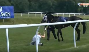 Dziennikarka łapie uciekającego konia. Wideo podbija sieć