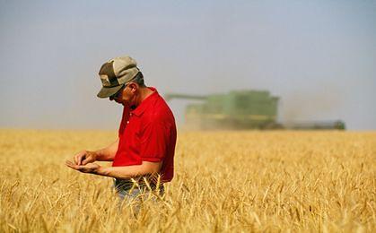 Szczęśliwy jak polski rolnik