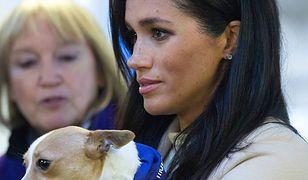 Królowa chce pozbyć się Meghan z pałacu