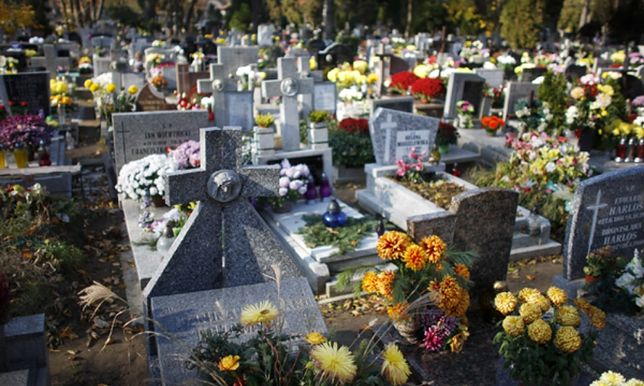 1 listopada Poznań – jak dojechać na cmentarz we Wszystkich Świętych 2018?