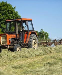 Rolnik nie ma dostępu do pola. Prowadzą na nim wykopaliska