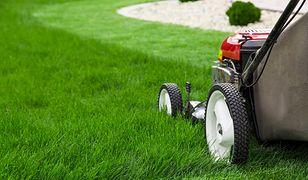 Zapoznaj się z funkcjami podstawowych sprzętów ogrodniczych