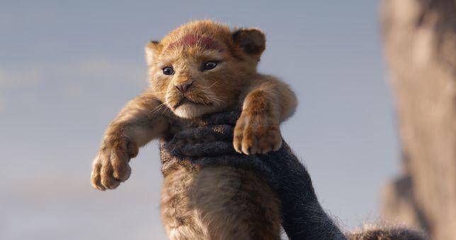 """""""Król lew"""" to propozycja dla nowego pokolenia widzów"""