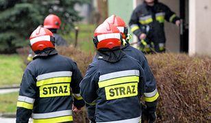 Strażacy z Grodziska Mazowieckiego od piątku przebywali w jednostce [zdjęcie ilustracyjne]