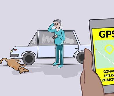 Animal Helper - na pomoc cierpiącym zwierzętom
