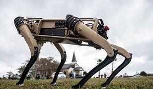 Robo-psy zaczynają służbę wojskową