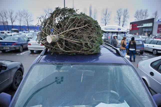 Choinka na dachu auta? To może być kosztowne rozwiązanie