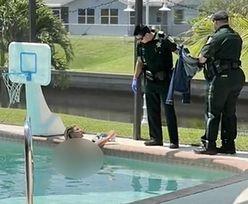 Nieproszony gość w basenie. Wrócił do domu i zobaczył nagą kobietę
