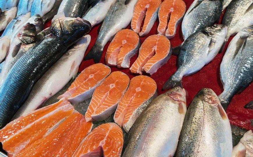 Mięso dzikiego łososia ma bardziej intensywny, koralowy kolor, podczas gdy dziki łosoś jest bladopomarańczowy