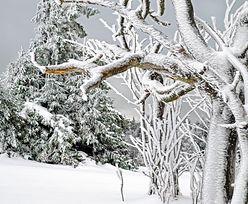 Koszmarne wieści pogodowe. Synoptycy zapowiadają śnieg i burze