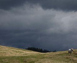 Nad Polskę nadciągają burze. W niektórych miejscach mogą pojawić się trąby powietrzne