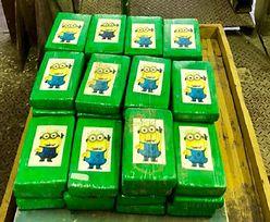 Ukraina. W pojemnikach z bananami znaleziono ponad 50 kg kokainy