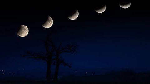 Pełnia Księżyca 2020. Oto aplikacje, które pozwolą obserwować zjawiska na niebie
