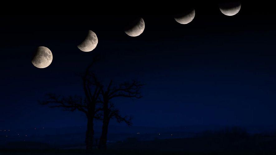 Pełnia Księżyca 2020. Oto najlepsze apki do obserwacji nieba fot. Witold Ochał