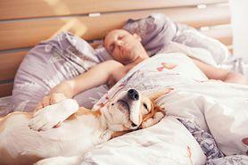 Wybierz idealne łóżko do spania!