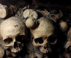 Zabłądzili w paryskich katakumbach. Odnaleziono ich po trzech dniach