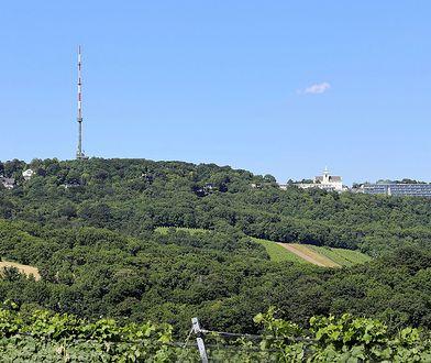 W nocy zniszczono dwa pomniki na wzgórzu Kahlenberg w Wiedniu