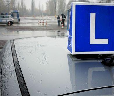 Zmiany dla młodych kierowców są gotowe od 2013 roku. Ich wejście w życie powstrzymywane jest przez system CEPiK