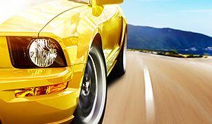 VW Polo R WRC zwycięża w Rajdzie Meksyku