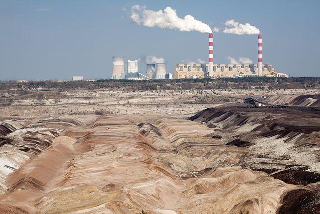 Polacy i kwestia zmian klimatu. Ekologia to nie tylko ograniczenie plastiku