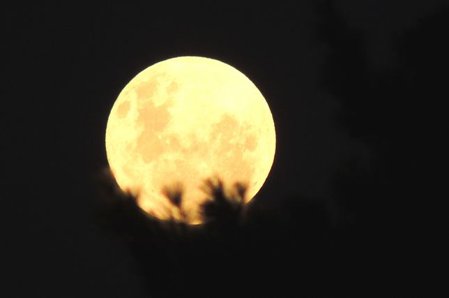 Blue Moon w Wielką Sobotę. Wyjątkowe zjawisko na niebie