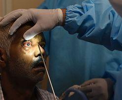 Czarny grzyb. Śmiertelna plaga wykańcza ozdrowieńców. Wiadomo, co zwiększa ryzyko