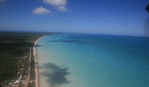 Znalazła wyspę w Google Earth. Jej kształt może zawstydzić