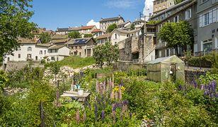Francja. Mężczyzna zapisał fortunę wiosce, w której ukrywał się podczas wojny