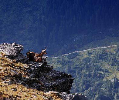 Park Narodowy w Niskich tatrach to oaza spokoju i nieziemskie widoki