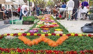 Portugalia - zaplanuj urlop tak, by zobaczyć najciekawsze eventy tego roku