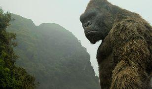 #klaps: ''Zwariować ze szczęścia'', ''Captain Fantastic'', ''Kong: Wyspa Czaszki''. Najciekawsze premiery tygodnia [17.02]