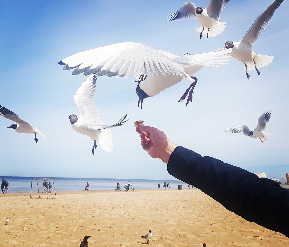 Łotwa. Bezkresne plaże i kurort z komunistycznym sznytem