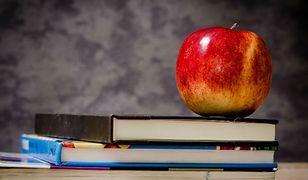 Lektury dla uczniów podstawówki. MEN pokazał projekt podstawy programowej. Oto szczegółowa lista książek