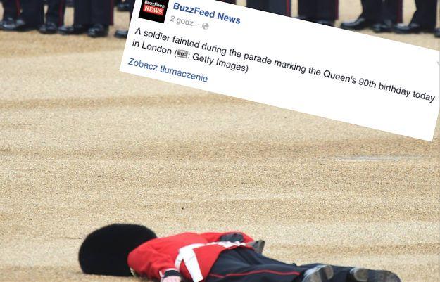 Brytyjski gwardzista zemdlał w trakcie parady. Nietypowy widok uchwycił jeden z fotografów