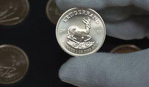 Moneta warta sztabkę złota. Krugerrand obchodzi 50. urodziny