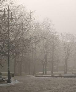 Pogoda we wtorek. Na wiosenną aurę musimy poczekać. Mgła, deszcz i zachmurzenie