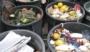 Wyrzucanie jedzenia to nie tylko strata pieniędzy dla tego, kto nie wykorzystał kupionych produktów. To również wymierna strata dla środowiska