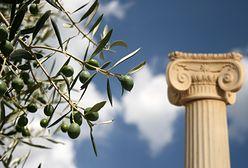 Krótka historia oliwy z oliwek. Boski dar Ateny